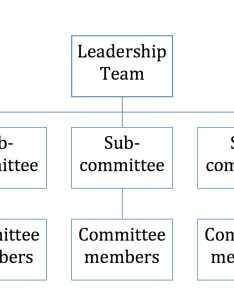 Characteristics of the traditional organizational structure also letting them shine working with multi coalitions rh drsaraheaton wordpress