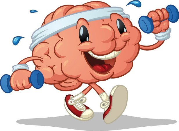 brain and exercise- small