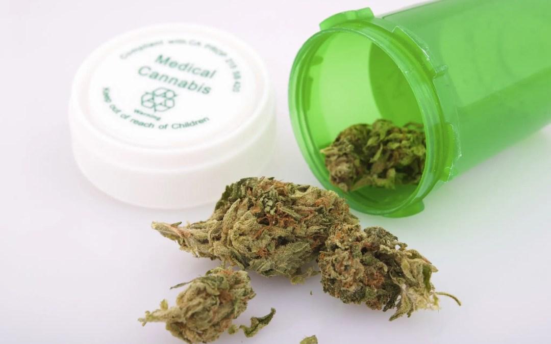 Children and Marijuana: The Missing Factor in the Debate