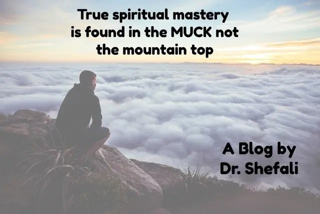 True spiritual mastery is found in the MUCK not the mountain top