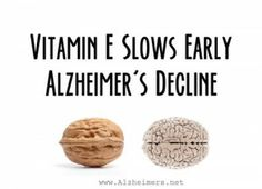Vitamin E Protects Against Memory Loss