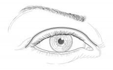 El ojo de raza blanca, dibujo