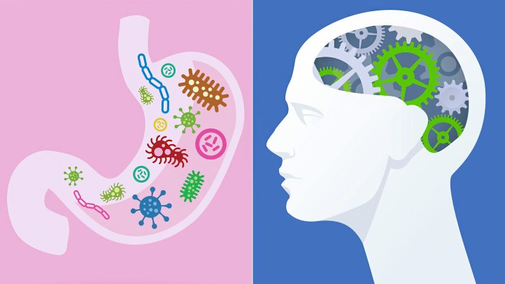 the-bacteria-in-the-gut-might-unlock-secrets-to-understanding-multiple-sclerosis-1440x810