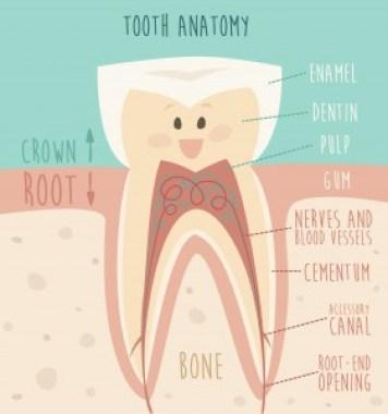 Penyebab Munculnya Rasa Tidak Enak di Mulut- Global Estetik Dental Care