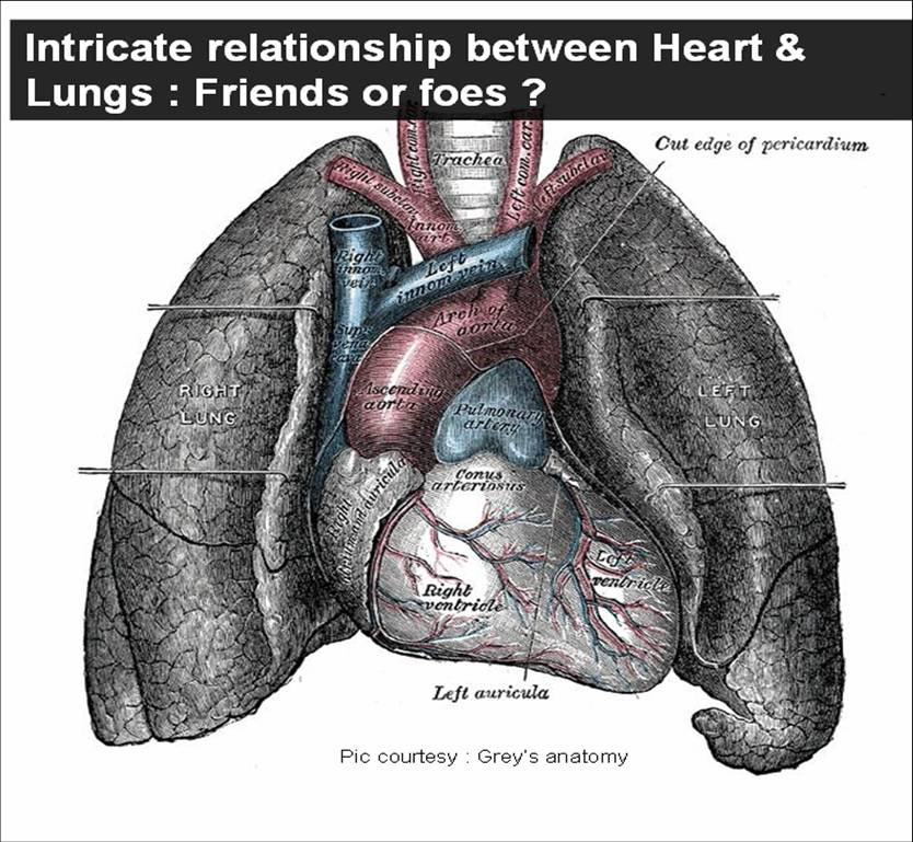 heart lungs pulmonary function test dyspnea cardiomegaly ct ratio