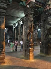 Many columns