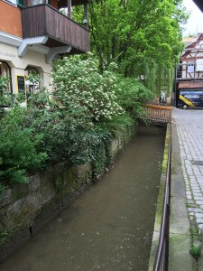 Part of the small canal in the city.