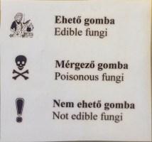 The key to fungi