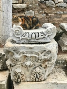 Even cats like the sculptures