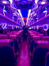 Tim and his Amazing Technocolour Dreambus
