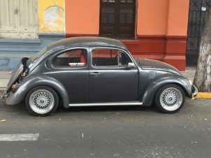 A beetle in slightly better condition than the yellow one