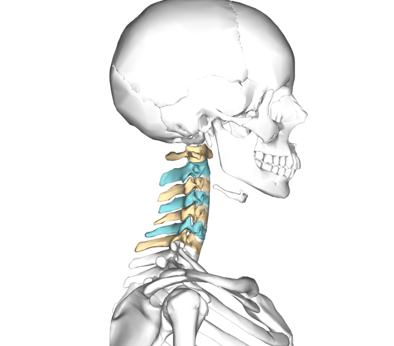 Additional Cervical Correlations