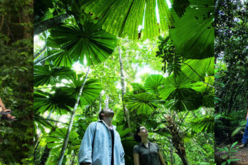 Active Tropics Explorer Day Tour
