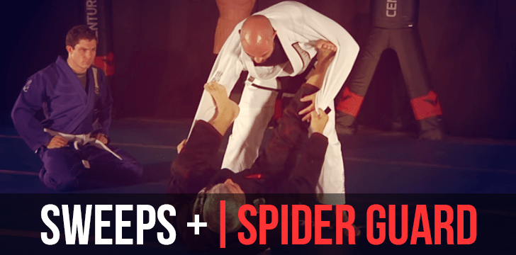 SWEEP | SPIDER GUARD