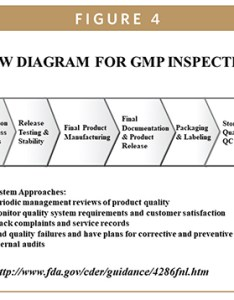 Fda gmp regulations require information about all the steps of manufacturing process from incoming materials to final distribution product also update   new drug approval development rh dev