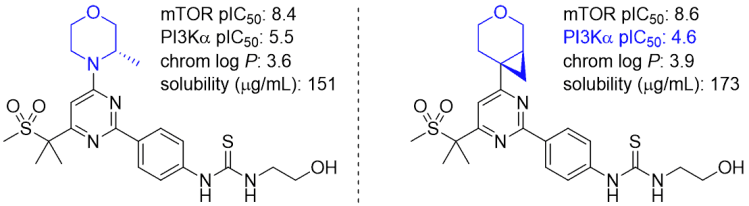 Comparison of a morpholine analog to a morpholine isostere compound