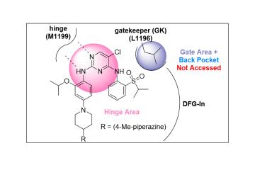 Kinase inhibitor Type I classification