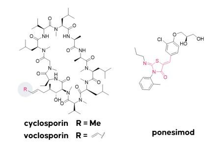 structures of the drugs cyclosporin, voclosporin, and ponesimod