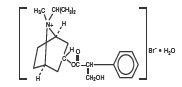 Ipratropium Bromide (Rebel Distributors Corp): FDA Package