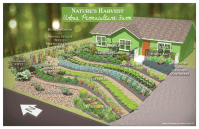 Converting Lawns to Gardens: Natures Harvest Permaculture ...