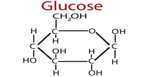 Glucose formula — glucose is a simple sugar with the