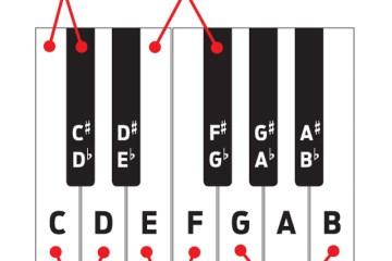 drum notation guide drum. Black Bedroom Furniture Sets. Home Design Ideas