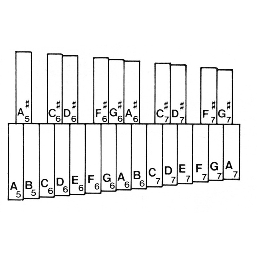 hight resolution of miss jacobson s music scales and fingering charts for beginning orchestra