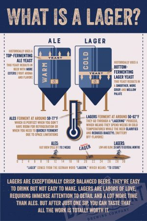 What is a lager? infographic