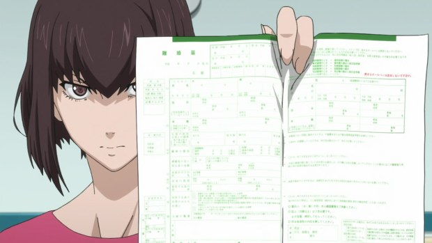 samurai_flamenco paperwork