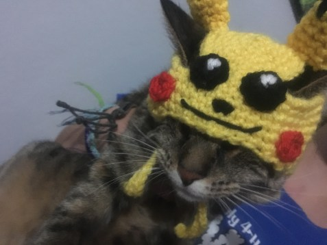 Pikachu Cat Hat Crochet Pattern