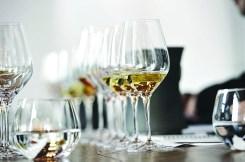 Tasting Dom Pérignon by Michel Jolyot