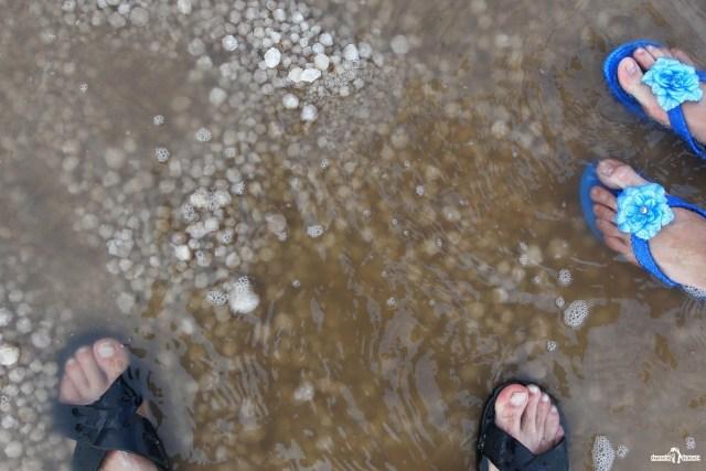 Кристаллы соли. Грунт. Озеро Баскунчак.