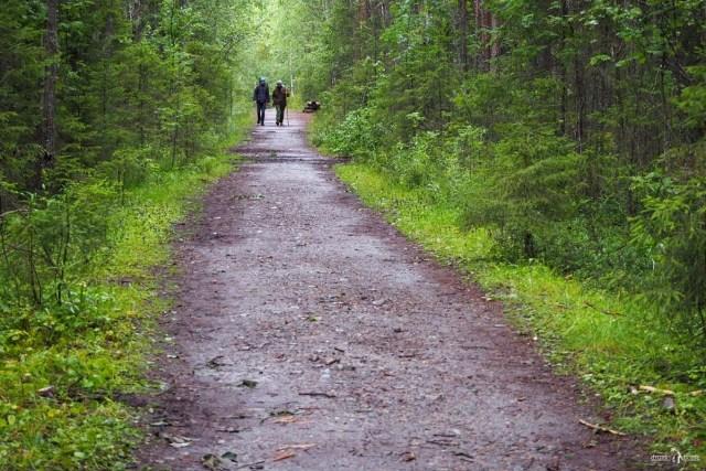 Пешеходная тропа к беломорским петроглифам