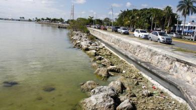 Photo of Contaminación en la Bahía de Chetumal