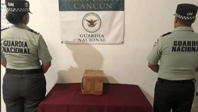 Photo of Aseguran varias piezas de buche de totoaba en el Aeropuerto de Cancún
