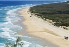 Photo of Un hombre muere tras ser atacado por un tiburón mientras pescaba en las costas de Australia
