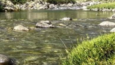 Photo of ¡Tragedia! Niñas entran a nadar sin supervisión y mueren ahogadas