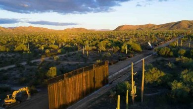 Photo of Colocan cámaras en muro de Trump; documentarán impacto en especies protegidas
