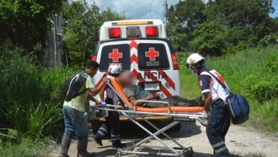 Photo of Lesionan a abuelito y lo encuentran ensangrentado en área verde en Cancún