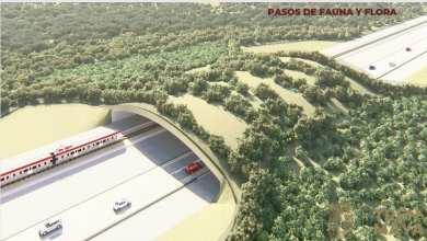 Photo of Industria forestal de Quintana Roo niega que Tren Maya generará beneficios para sus agremiados