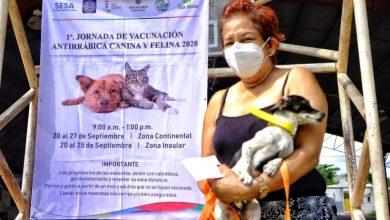 Photo of Continúa la jornada de vacunación antirrábica en Isla Mujeres