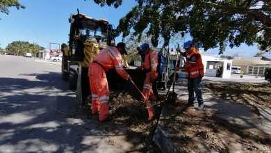 """Photo of Avanza Solidaridad en limpieza tras daños ocasionados por """"Delta"""""""