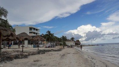 Photo of Asociación de Hoteles de la Riviera Maya preparada para resguardar a turistas