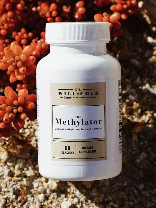 The Methylator 3