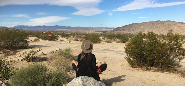 Intro to Dhammaland –The Happiest Place on Earth:A 12-day Journal of my Vipassana Silent Meditation Retreat Experience