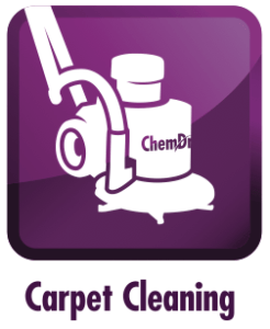 carpet cleaning the villages fl