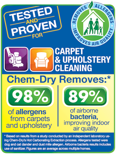 "healthy carpet cleaning the villages"" data-recalc-dims="