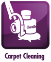 carpet cleaning lake county