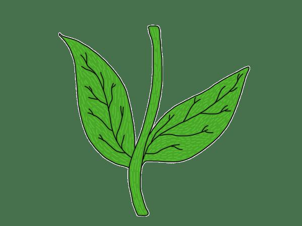 Bobblehead Blossoms - Dryden Art