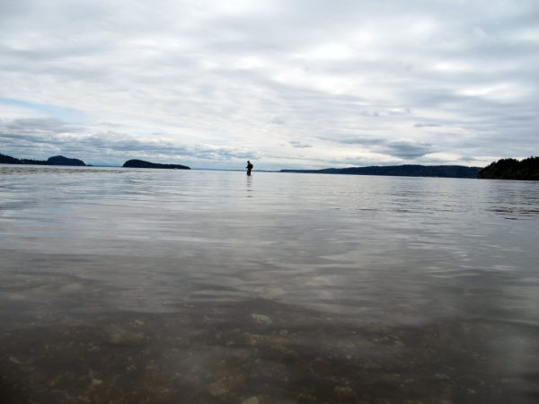 puget sound beach fly fishing